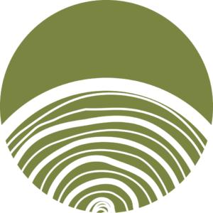 Holzschutz und Schwammbekämpfung