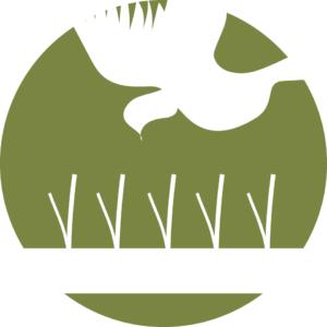 Vogelabwehr und Taubenschutz