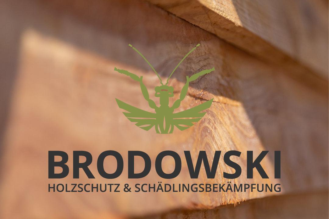 Schädlingsbekämpfung Brodowski: Holzschutz Vom Profi